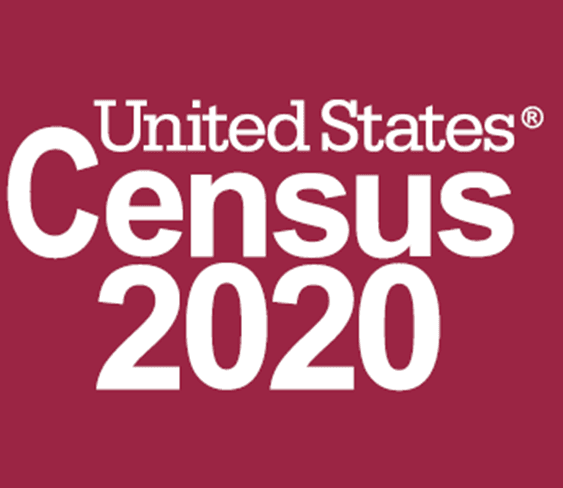 United States Census 2020 in text