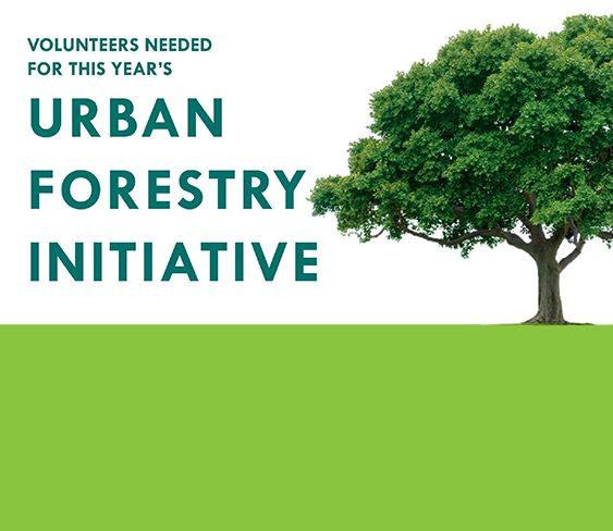 Volunteers needed for 2020 urban forestry initiative